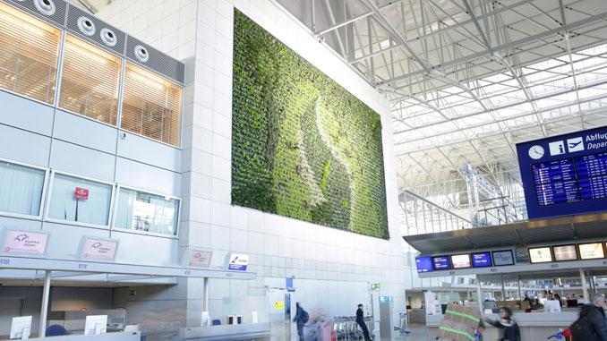 Frankfurt Airport's green walls